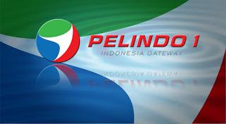 Lowongan Kerja Terbaru PT. Pelindo I (BUMN) Sebagai Staf Pandu