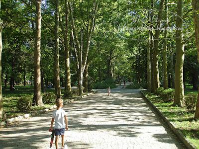 поездка в крым, детский парк симферополь