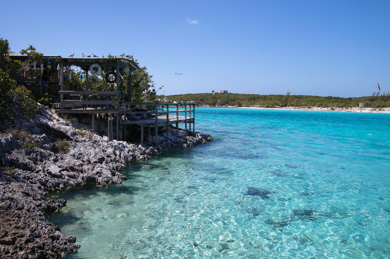 A Day at Little Norman's Cay - Jeff Smallwood Photography