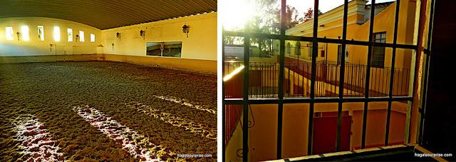 Poule de treinamentos da escola de cavalaria da Arena de Touros de Ronda, Andaluzia