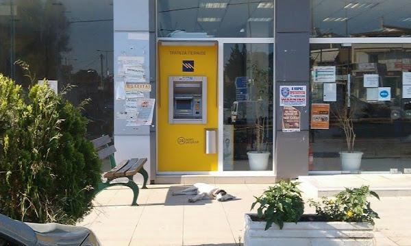 Βασιλόπουλος προς Μπουρνούς: Γιατί κ. Δήμαρχε κατηγορείτε τον Δήμο μας;