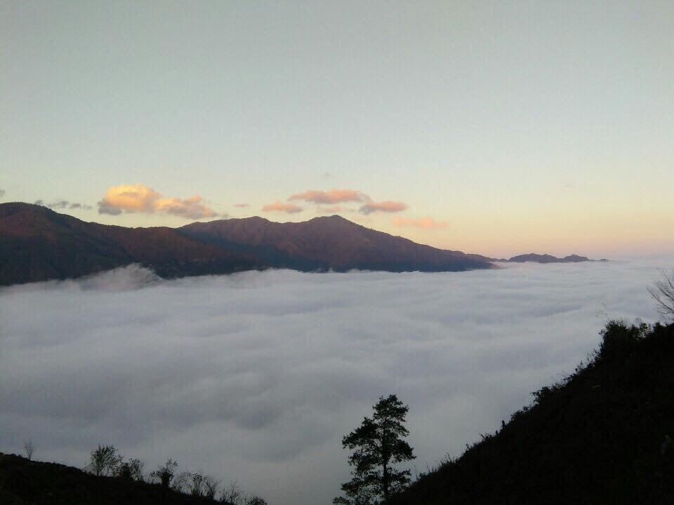Săn mây Tà Xùa ngỡ như lạc vào chốn 'thiên đường' - Ảnh 4