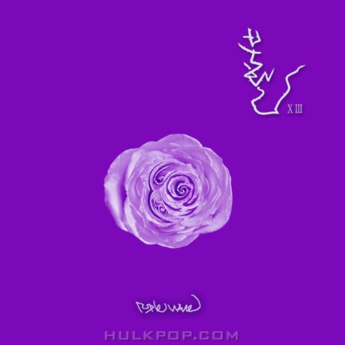 Boohwal – Purple Wave (FLAC)