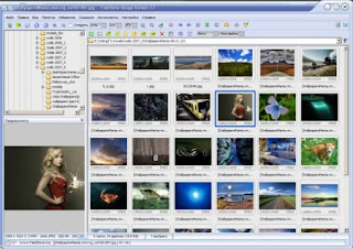 FastStone Image Viewer screenshot