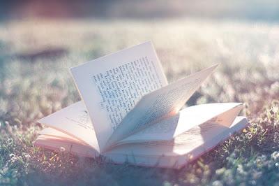 foto membaca buku di alam bebas