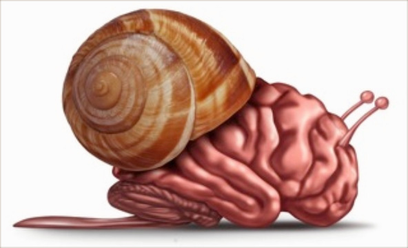 Slow Functioning Brain, Brain Fog