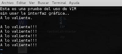 prueba de Vim