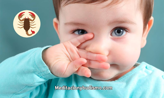 Todo sobre los bebés ESCORPIO