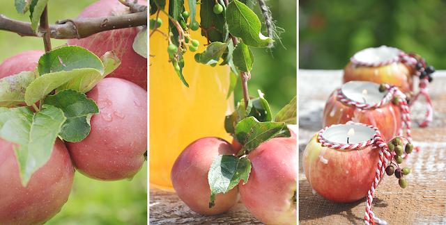 Der Apfel - vielseitig, gesund und lecker