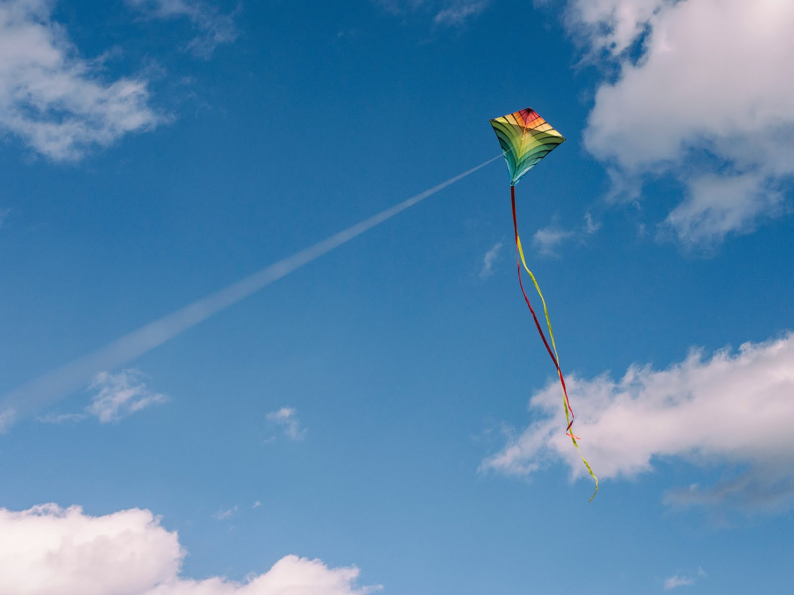 A Kite Flies And Art Is Beautiful Because Of Rules