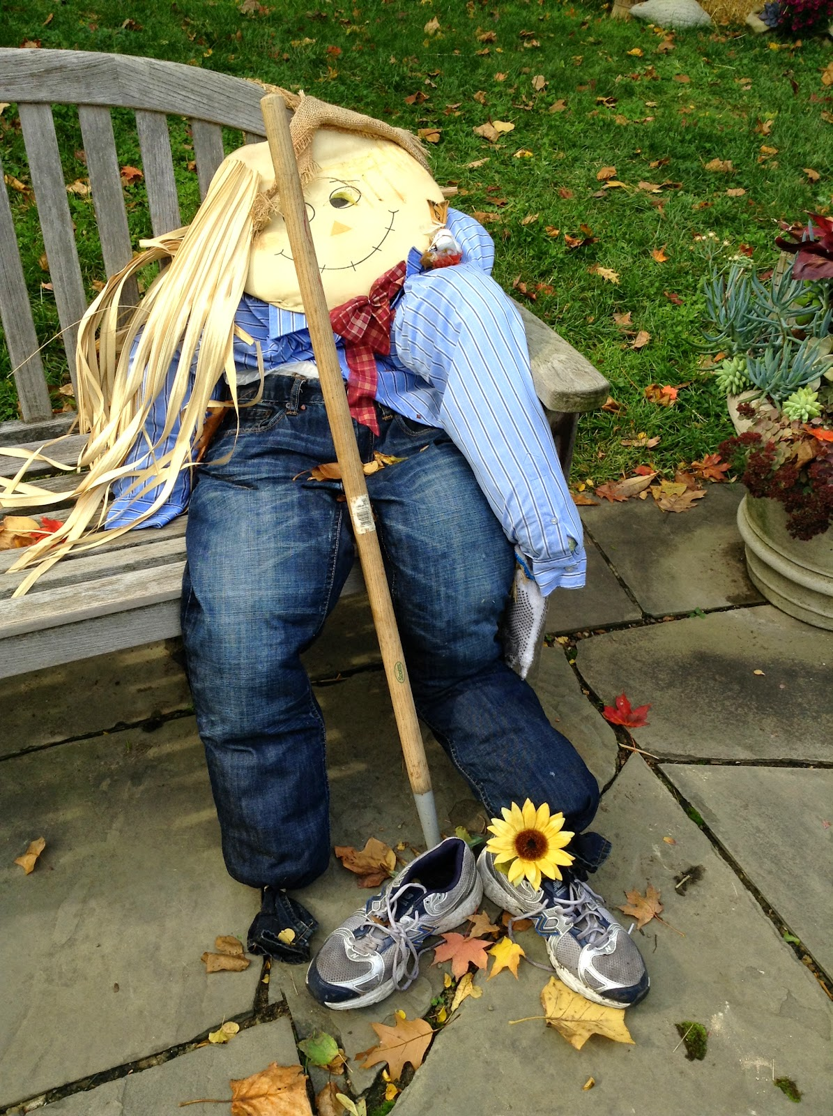 Fall-out Scarecrow  | ColorFall at CLE Botanical Garden