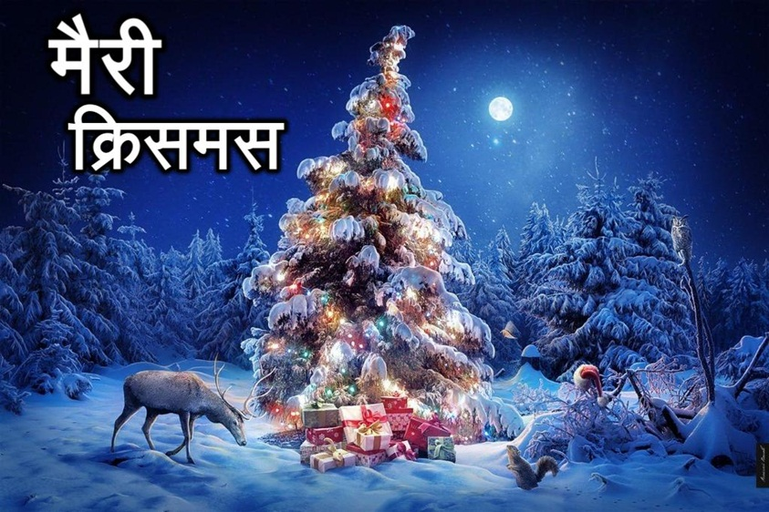 Merry Christmas Image in Hindi