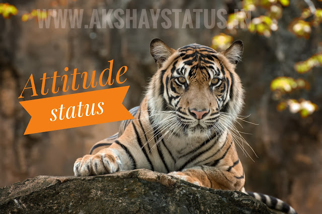 badmashi status, khatrnak status, attitude status