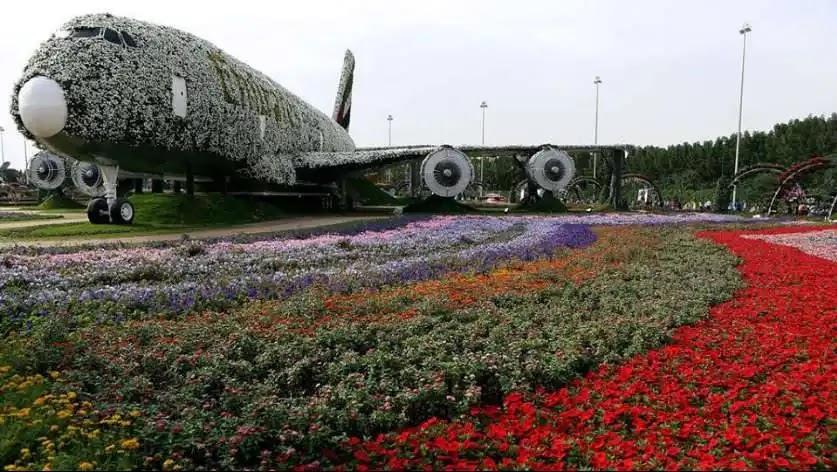 طائرة حديقة الزهور في دبي