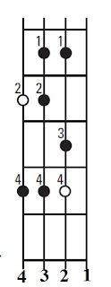 Major scale on the bass guitar