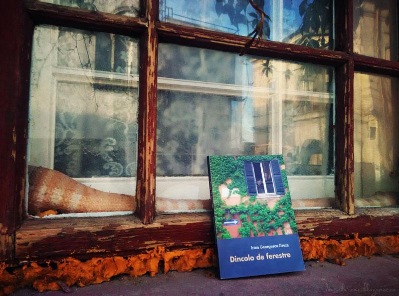 Dincolo de ferestre de Irina Georgescu Groza