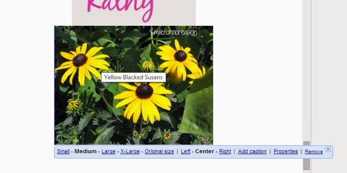 rename your blog pictures