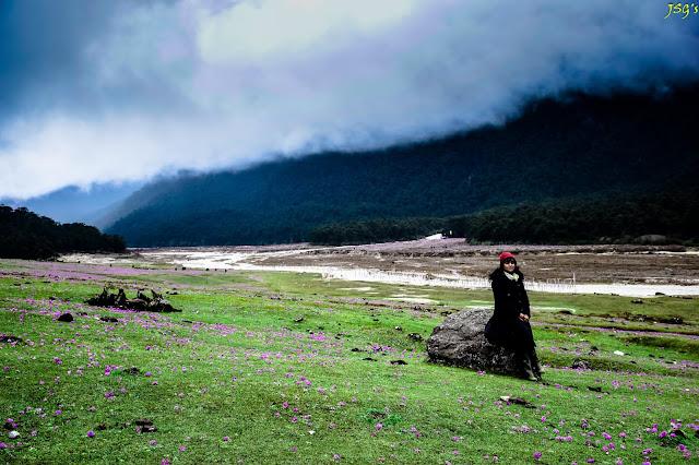 Yumthang Valley: Photo Courtesy by Jayashree Sengupta @DoiBedouin