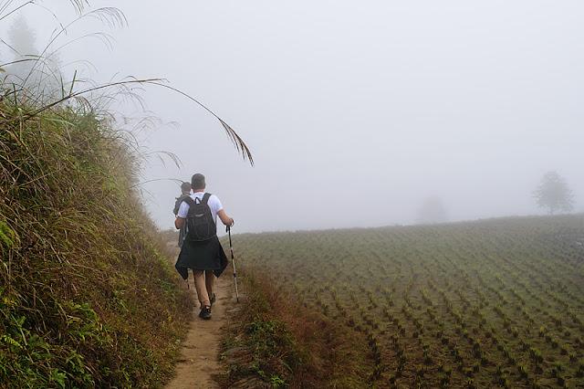 Randonnée dans les rizières embrumées de Ping'an