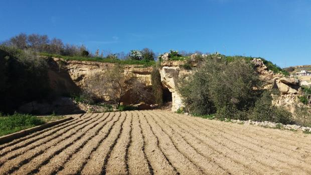 Roman catacombs in Malta's Gozo under threat