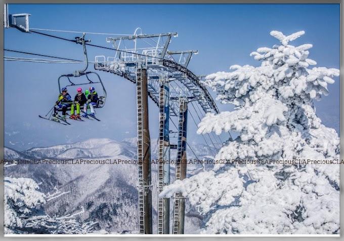 Gangwon Korea : Top Winter Destination And Ski Resort In Korea