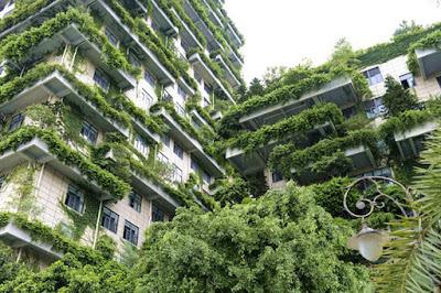 kellemesebb környezet függőleges kertekkel