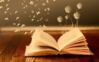 Libri e romanzi