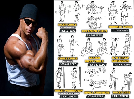 3 Best Compound Exercises For Massive Biceps and Triceps