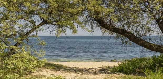 Rezervatia de dune marine de la Agigea