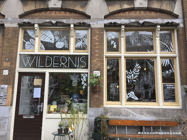 Wildernis cafe, plant shop in Amsterdam
