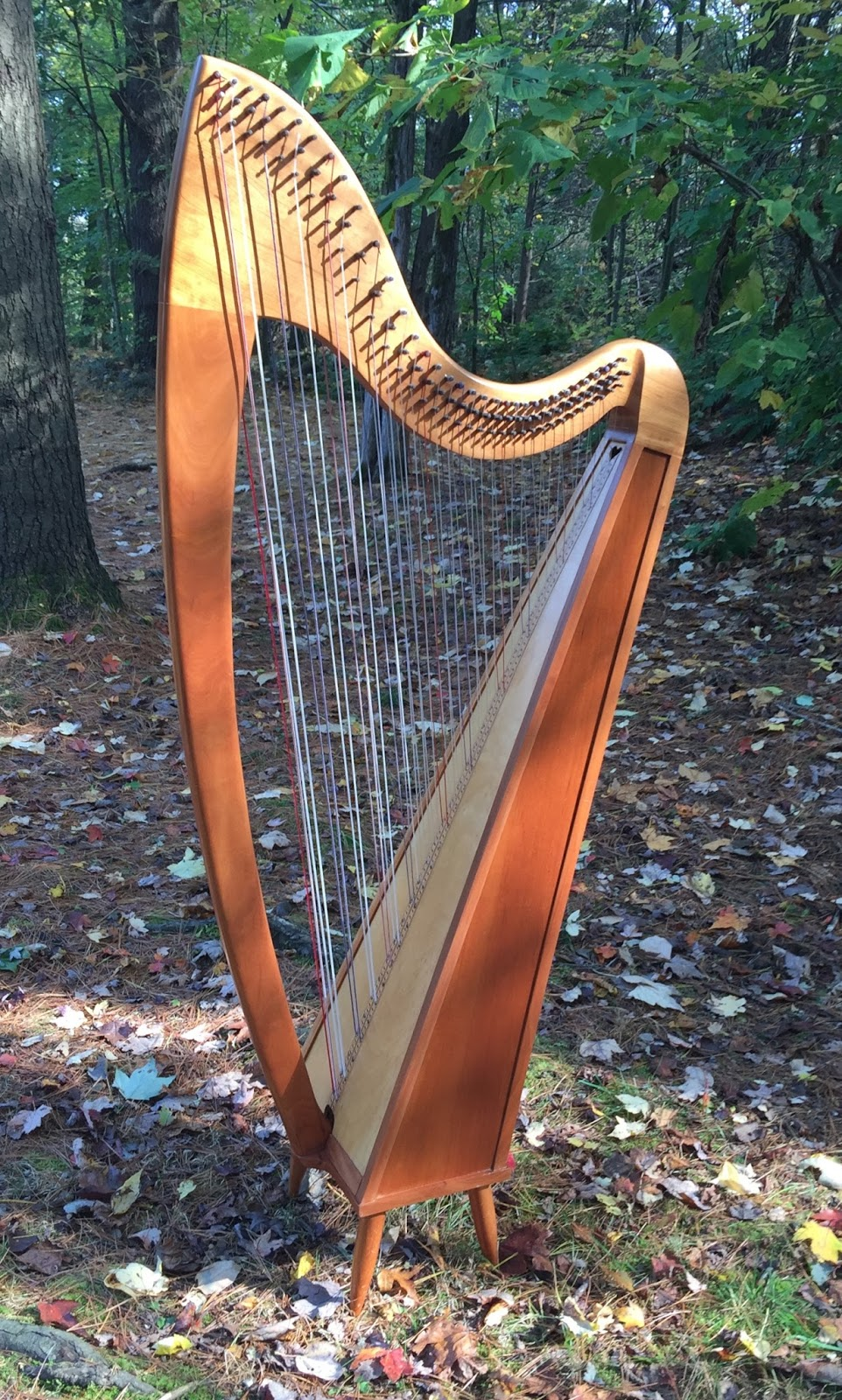 Artful Art and Music: A New Harp Journey