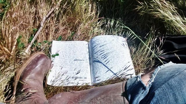 diario wwoofer