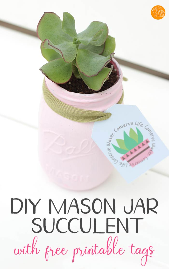 LOVE these DIY mason jar succulents for Mother's Day or Teacher Appreciation week! Such a cute gift idea and a great way to teach kids about water conservation. Comes with free printable labels! Part of our Family Dinner Book Club series on kids making a difference. #masonjar #diy #succulents #giftideas
