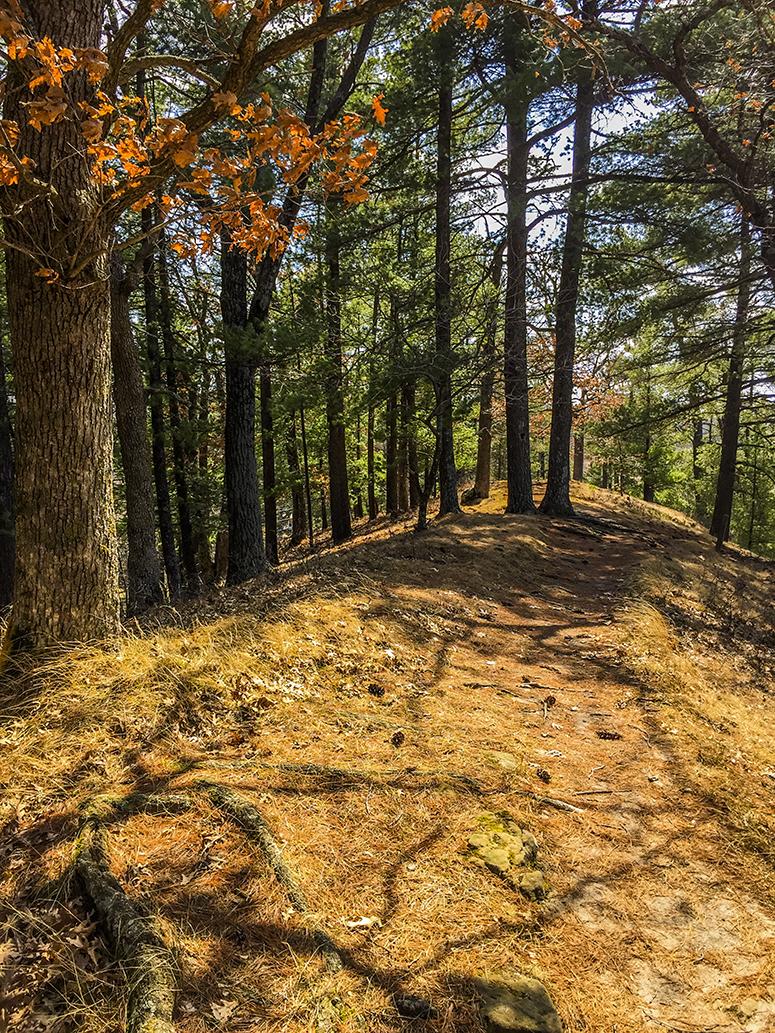 Wisconsin Explorer: Hiking the Kickapoo Valley Reserve ...