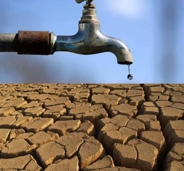 الزراعة المائية فى مصر
