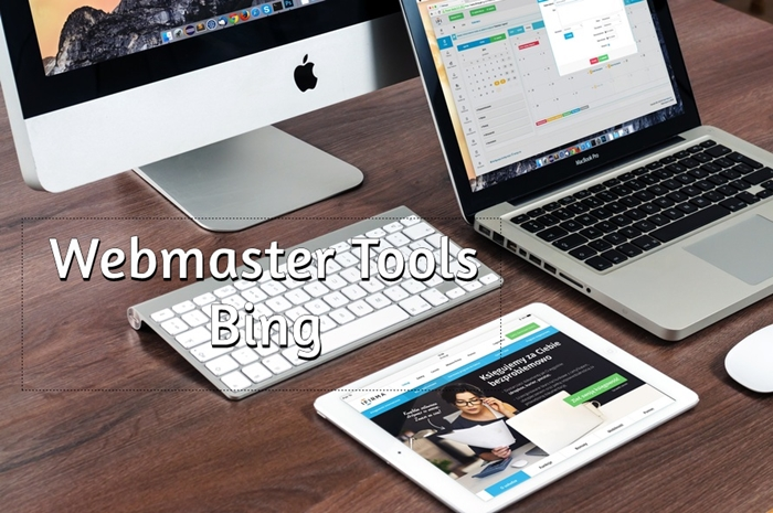 Webmaster Tools do Bing