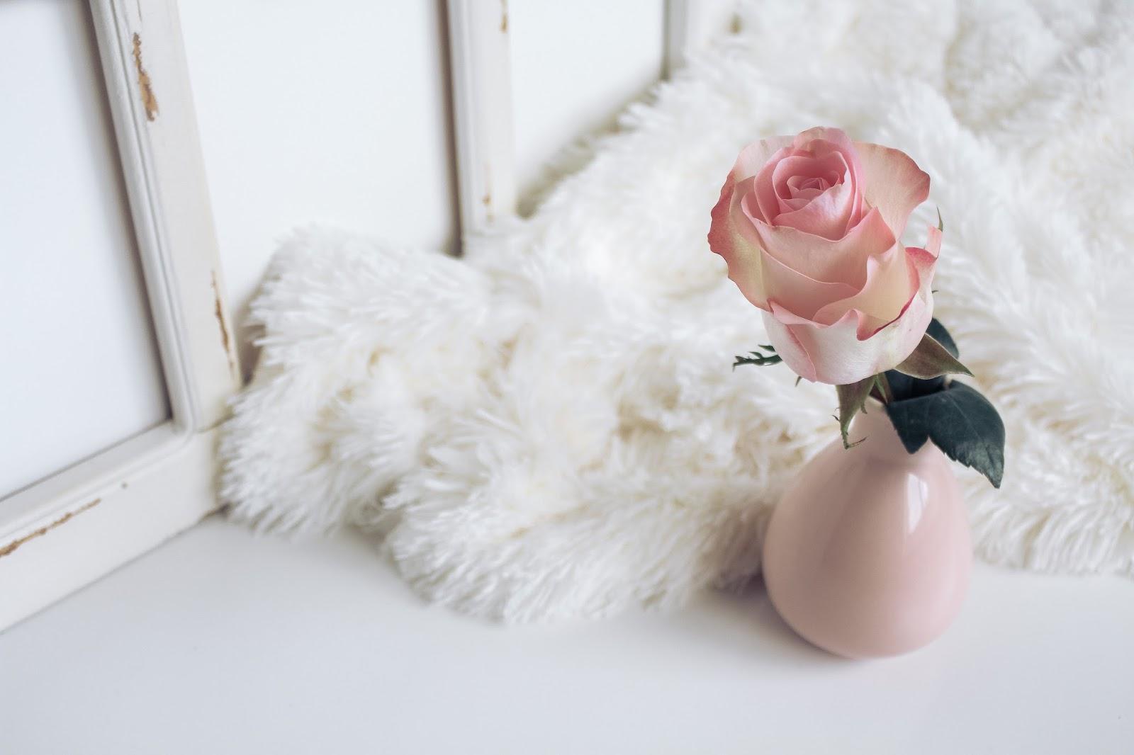 festeggiare la donna serve davvero? fashionsobsessions.com zairadurso @zairadurso i disagi del blogging fashion's obsessions blog riflessioni varie femminismo