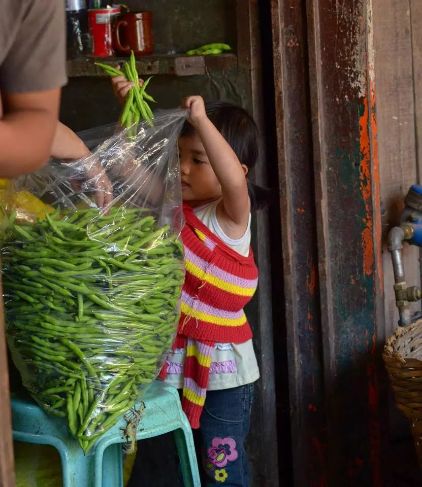 Starting Young Bagger Helping the Family Business Baguio City Public Market Hanger Section Cordillera Administrative Region Philippines