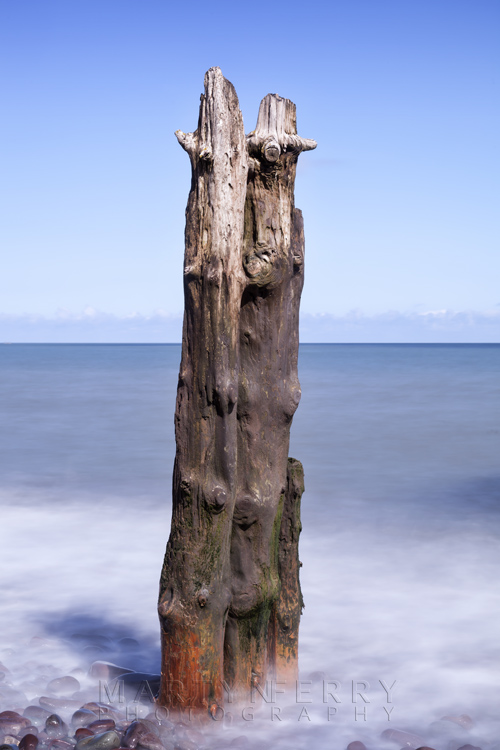 Exmoor coastal groynes at Porlock Weir by Martyn Ferry Photography