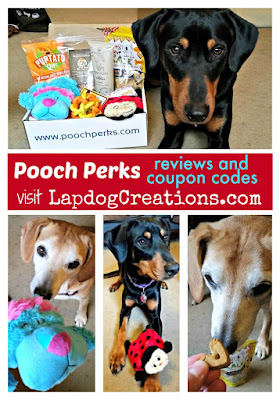 rescue dogs with Pooch Perks subscription box