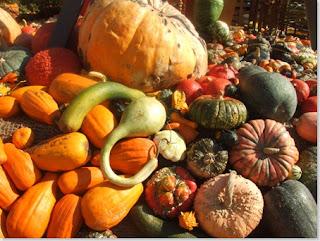 Festa Della Zucca dal 2 al 6 ottobre Gavirate (VA) 2016