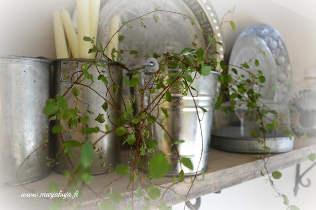 keittion kukka vanhat tavarat