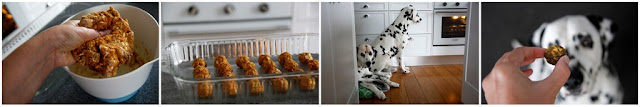Making meatball dog treats with two Dalmatian dogs watching in the kitchen