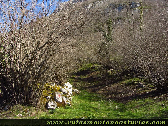Camino al Cuetu Ferreiru
