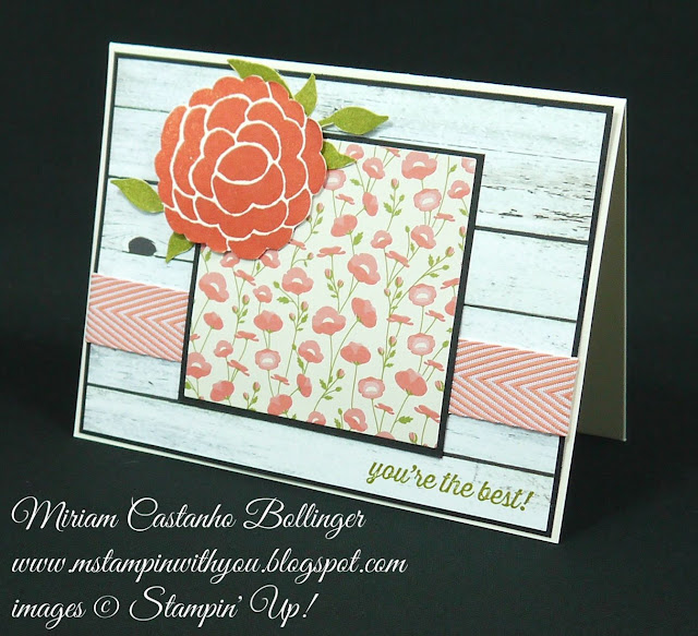 Miriam Castanho Bollinger, #mstampinwithyou, stampin up, demonstrator, sssc, all occasions card, farmer's market dsp, pretty petals dsp, bountiful border, chevron ribbon, su