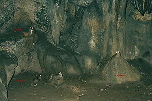 char dham idols inside patal bhuvaneshwar
