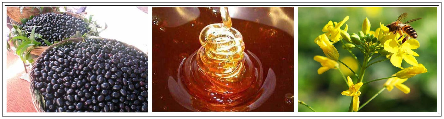 Brij Honey Laboratory Products
