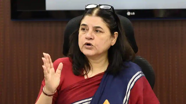 Lok Sabha Election 2019, Lok Sabha Election in India, BJP, PM 2019