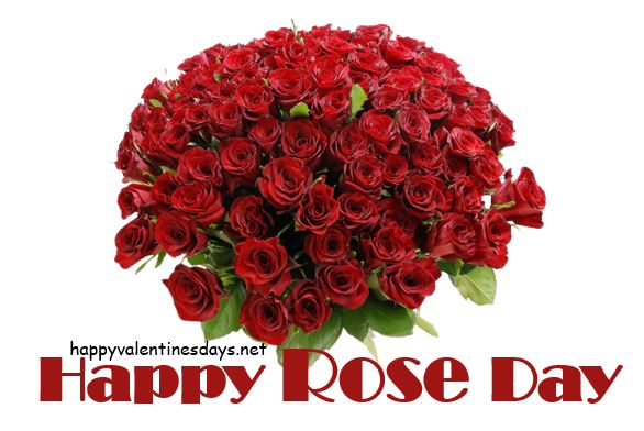 red-roses-images-download