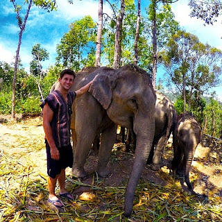 Christian Leblanc with a bunch of elephants during  his tour to Asia via geniushowto.blogspot.com the elephant clicked a selfie